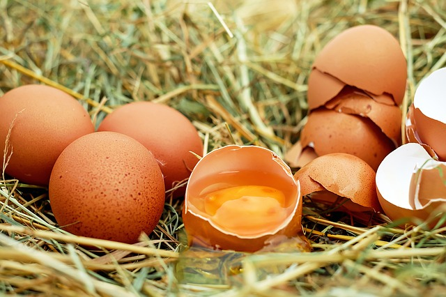 National Egg Day celebrates all the different ways that we can served the very versatile egg!