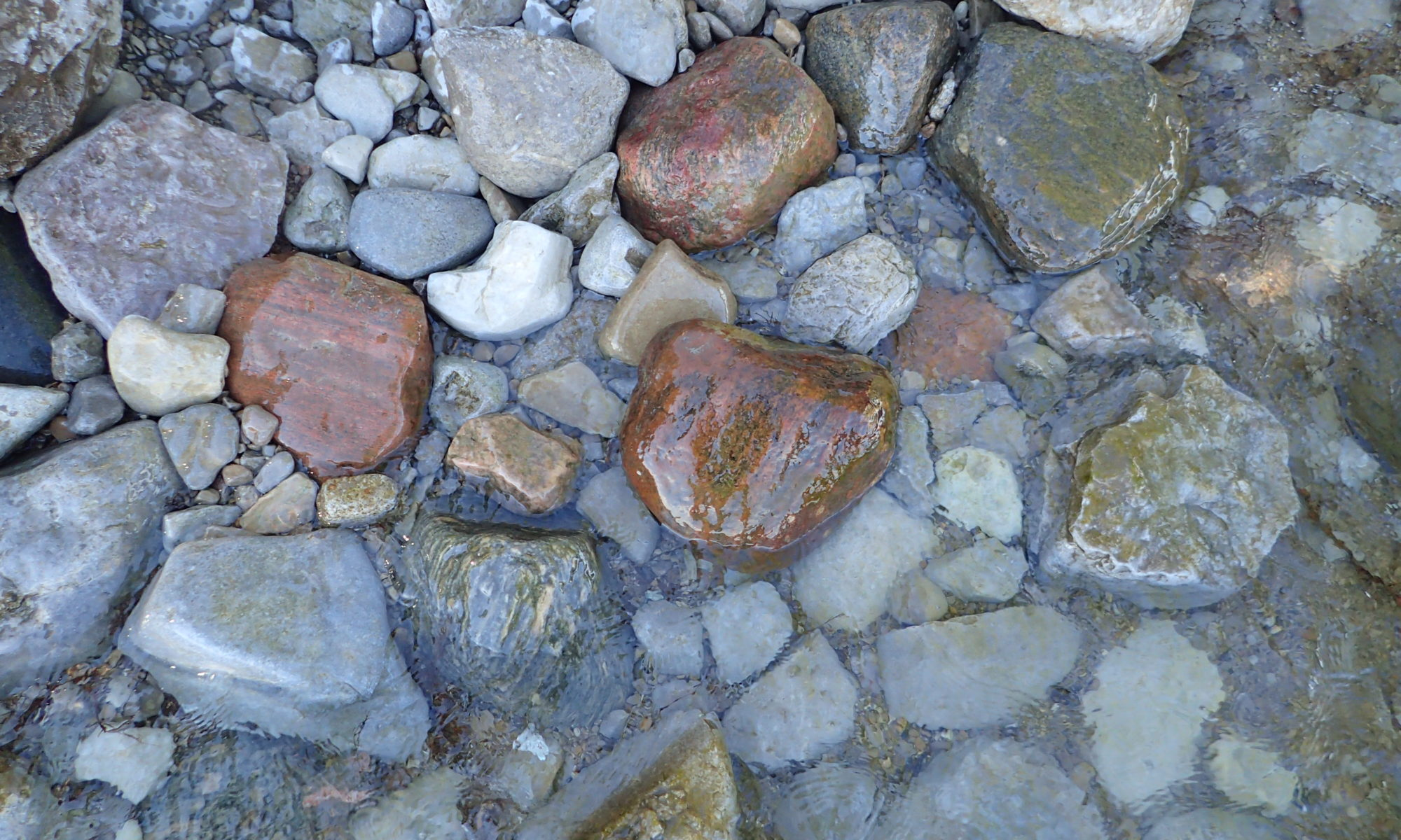 Water covered rocks photo on the shore of Lake Simcoe. Photo Courtesy Purple Door Creative