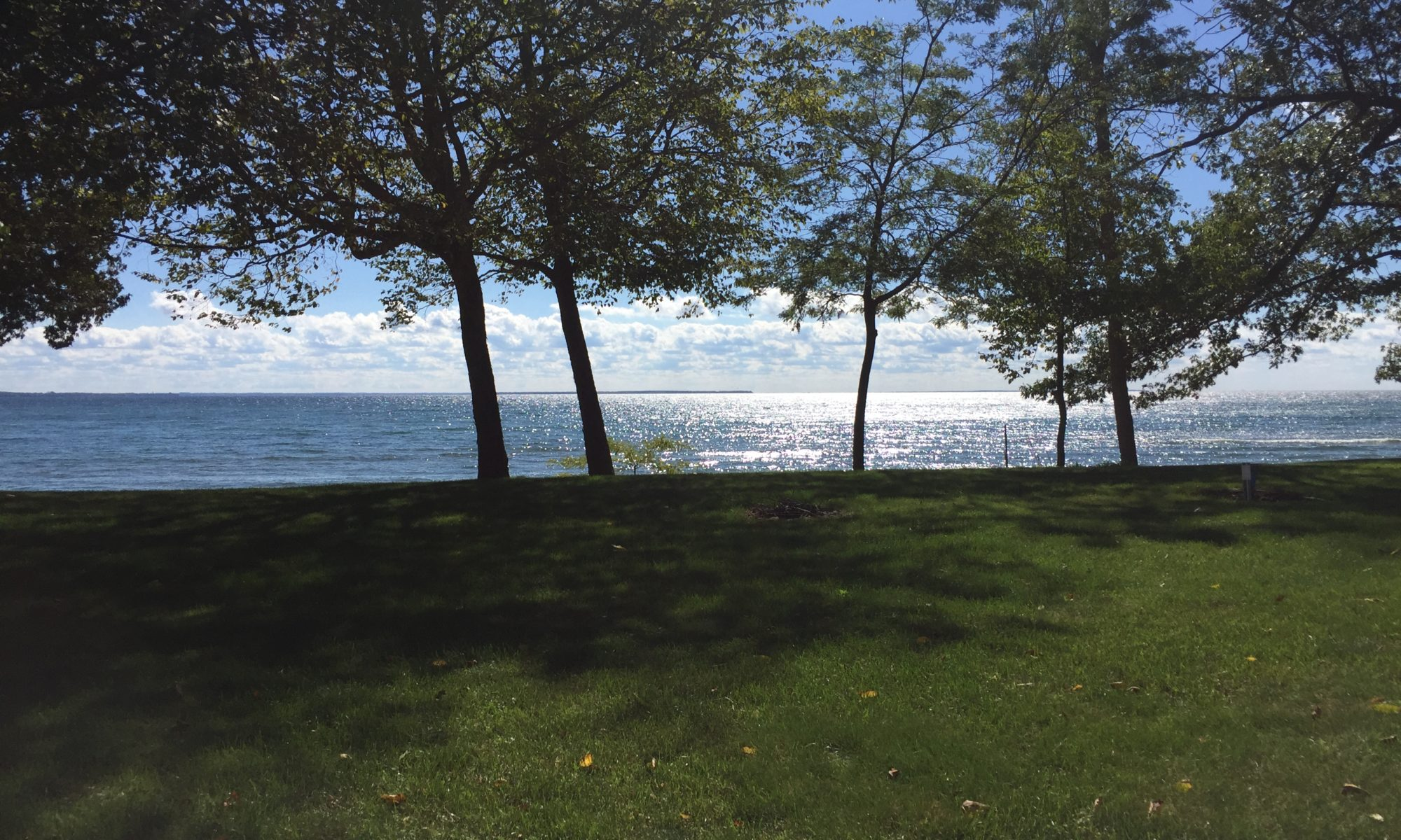 Photo of front lawn and lake of cottage property. Photo Couresty Random Acts of Creativity
